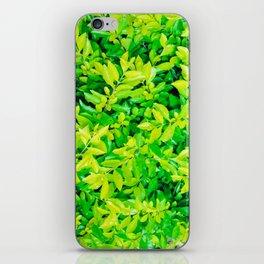 hojas verdes iPhone Skin