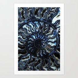 Blue Ammonite Art Print