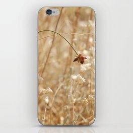 Flimsy iPhone Skin