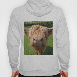 Highland cow nose Hoody