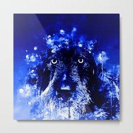 wire haired dachshund dog wsdb Metal Print
