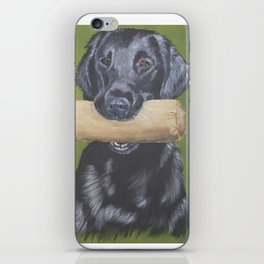 Flatcoated retriever and dumbbell iPhone Skin