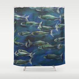 Herring Run Shower Curtain