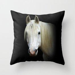 The white Arabian  Throw Pillow