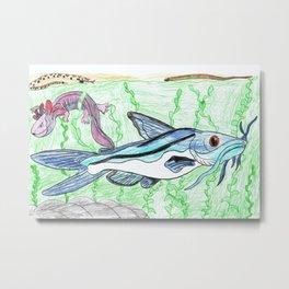 Mexican Blue Catfish Metal Print