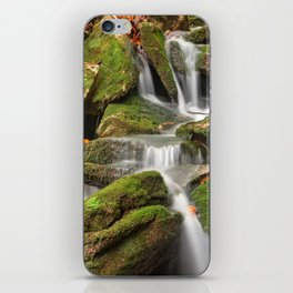 Mossy Rohrbaugh Waterfall iPhone Skin