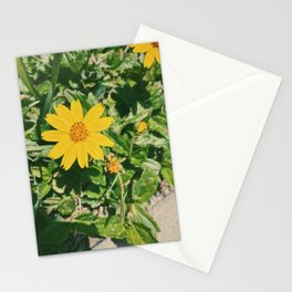 Dainty Yellow Flower Stationery Cards