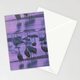 NOISY BIRDS Stationery Cards