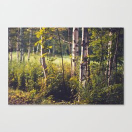 Whispers of Gold Canvas Print