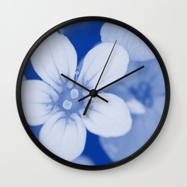 Background of small flowers. Shallow depth of field. Blue toned. Wall Clock