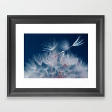 Snow Dandelion Framed Art Print