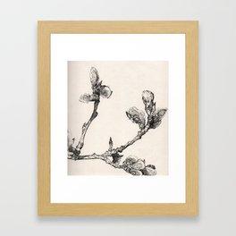 Ink Branch Framed Art Print