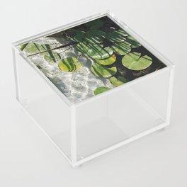 You're My Lilypad Acrylic Box