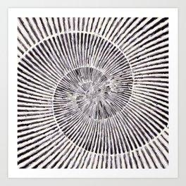 Flat Shell Art Print