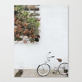 Wall Plants + Bike Canvas Print