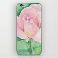 tiffany iPhone & iPod Skins featuring Tiffany Rose by Annie Mason