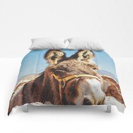 Donkey photo Comforters