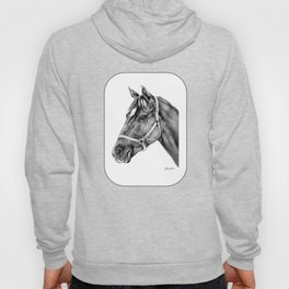Affirmed (US) Thoroughbred Stallion Hoody