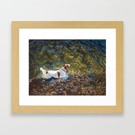 The Shallows Framed Art Print
