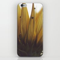 crown iPhone & iPod Skins featuring Crown by BURNEDINTOMYHE∆RT♥