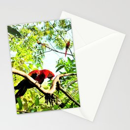 Endangered Trio of Scarlet Macaws Stationery Cards