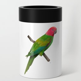 Colorful Parrot 2 Can Cooler