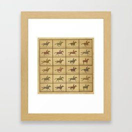 Time Lapse Motion Study Horse muted Framed Art Print