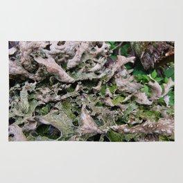 Life on a Fallen Tree Rug