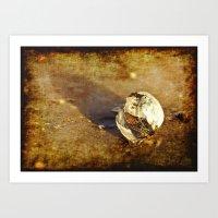 seashell Art Prints featuring Seashell by Svetlana Sewell