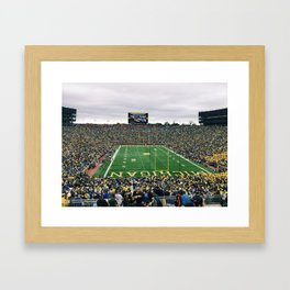 Viva la Harbaugh Framed Art Print