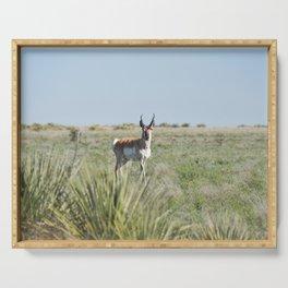 Pronghorn Antelope Serving Tray