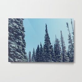 Within the Forest Metal Print