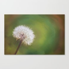 Beauty Beneath It Canvas Print