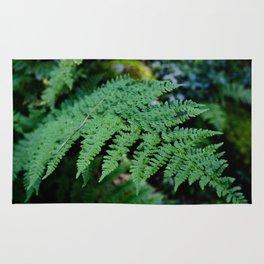 Fern Forest Rug