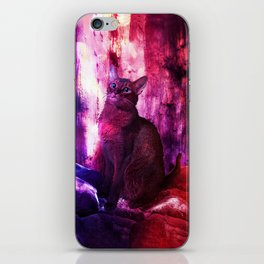 The Sunkissed Abyssinan Cat from Planet Kitarus iPhone Skin