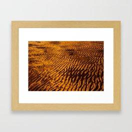 Golden Sand Framed Art Print