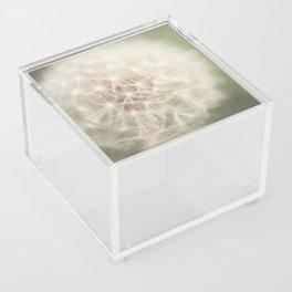 Little wishes Acrylic Box