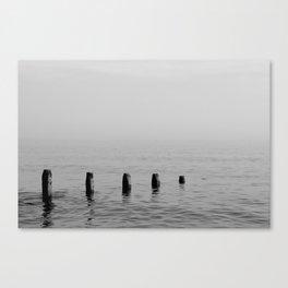 Five Stumps - Black and White Canvas Print
