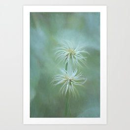 Will-o'-the-wisps In the Garden Art Print