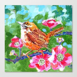 Wren with Pink Dogwood Blossoms Canvas Print