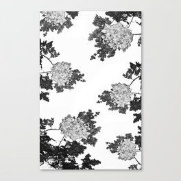 wildplant#4 Canvas Print