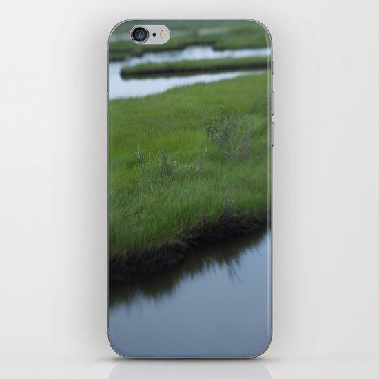 Cattus Island iPhone Skin