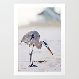 Blue Heron on the Beach Art Print