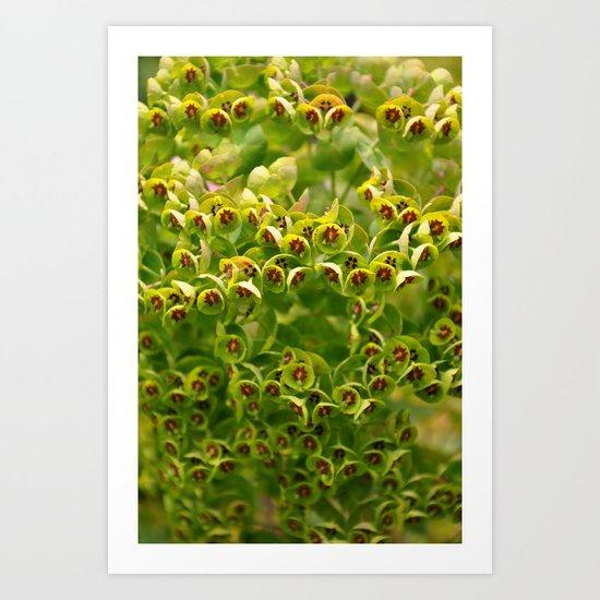 Green Flowers Art Print