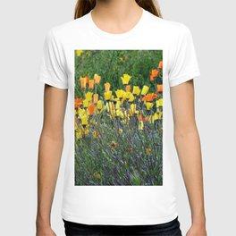 Super Bloom Fallbrook, CA 2019 T-shirt