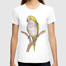 Quaker parrot in watercolor T-shirt