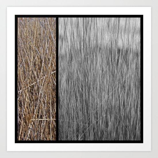 Reeds abstract 3 Art Print