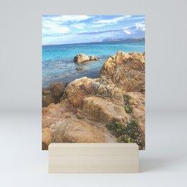 A Splash of Succulents Mini Art Print