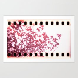 Holga x-processed pink spring tree Art Print
