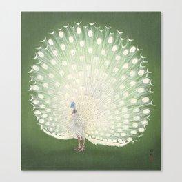 Peacock, Ohara Koson - Japanese Woodcut Canvas Print